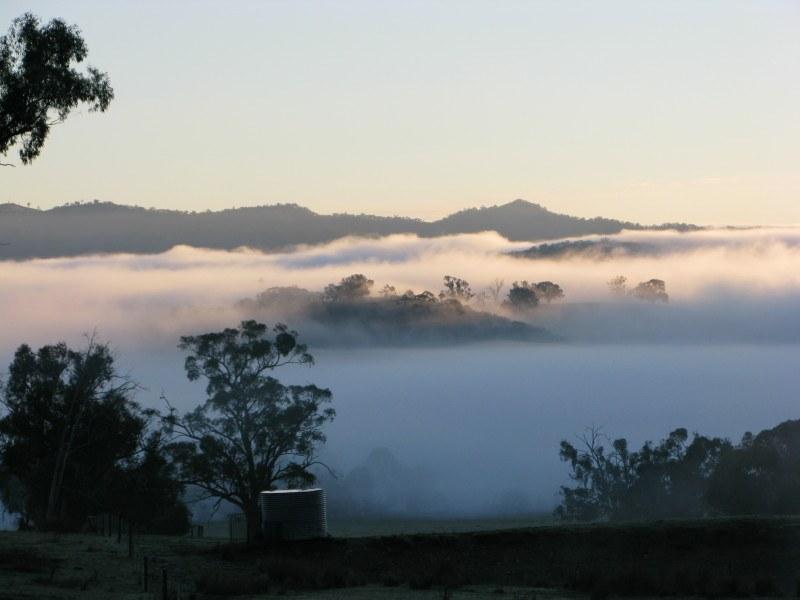 Winter Fog: A Magical Hazard