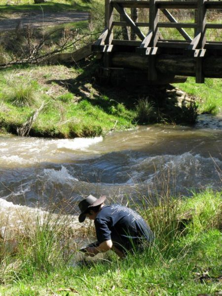 panning for gold at Woods Point on the Golbourn river