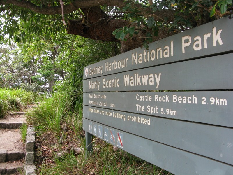 The Manly Scenic Walkway, and How to Catch a Bus in Sydney