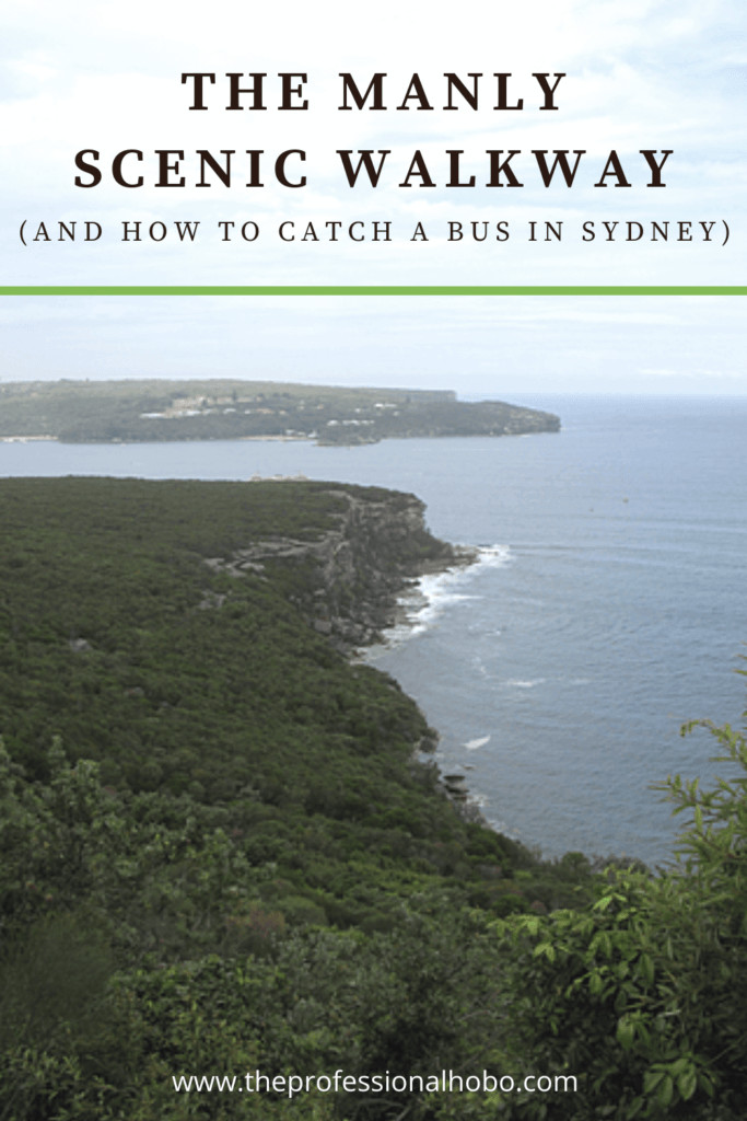 Check out the Manly Scenic Walkway in Sydney; a travel tale with additional advice on how to catch a bus in Sydney (aka: don't make my mistake!) #ManlyScenicWalkway #Sydney #Australia #traveltips #TheProfessionalHobo