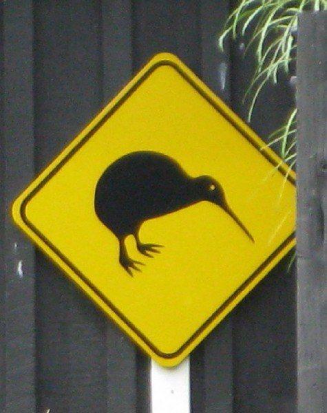kiwi bird sign