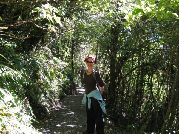 The Professional Hobo in the dense foliage at the end of the Tongariro hike