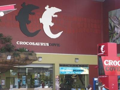 croc madness in Darwin