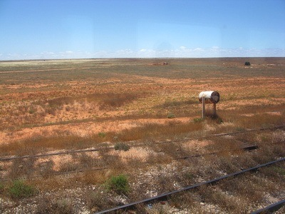 Nullarbor Desert Australia, near Kalgoorlie