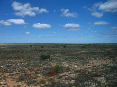 Taking the Indian Pacific Train Across Australia: PART FOUR