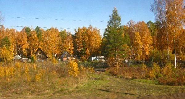 day three autumn foliage in russia