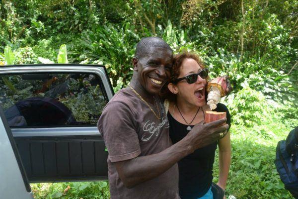fresh cocoa fruit at sulphur springs