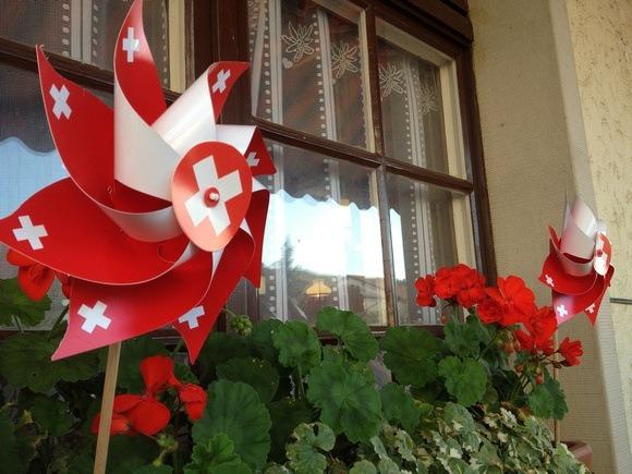 The Swiss Life: Random Observations