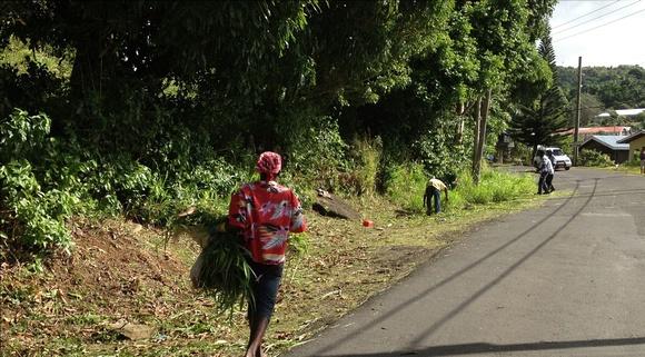 Grenada Gets a Face Lift
