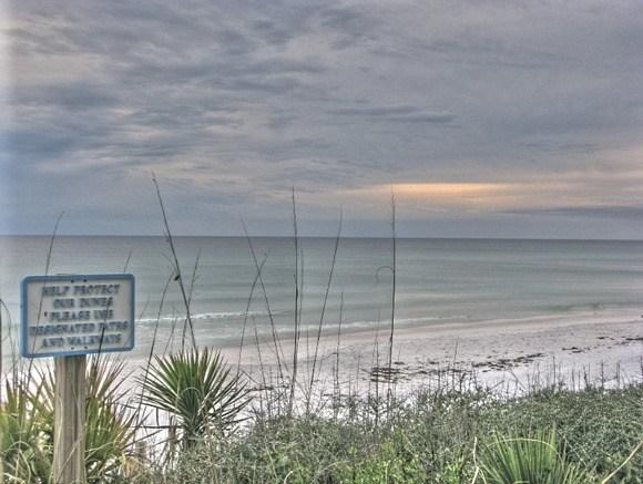 Florida's (chilly) Gulf Coast