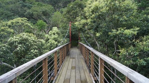 the hike to Hiji waterfall in Japan, by Julio Moreno