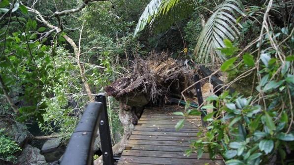 destroyed bridge on the hike