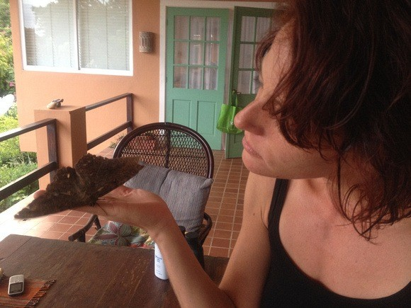 Nora Dunn holding a giant moth in Panama