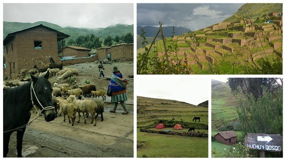 Trekking the Andes: Birthing Llamas, Abandoned Villages, and Rain