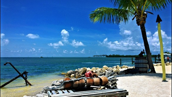 Beach and fishing gear with blue sky and palm tree