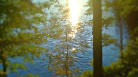 Sparkling lake in cottage country