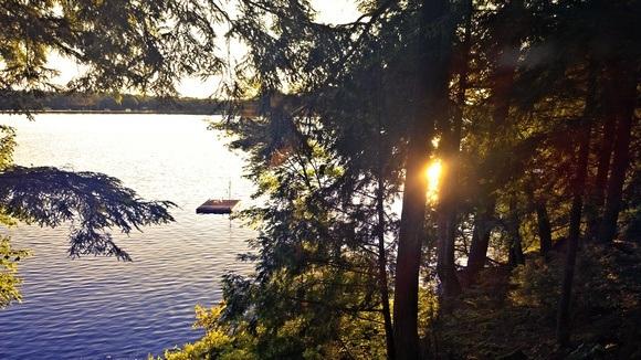 A perfect Muskoka scene with lake and trees