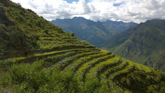 Terraced mountainside in the Sacred Valley of Peru