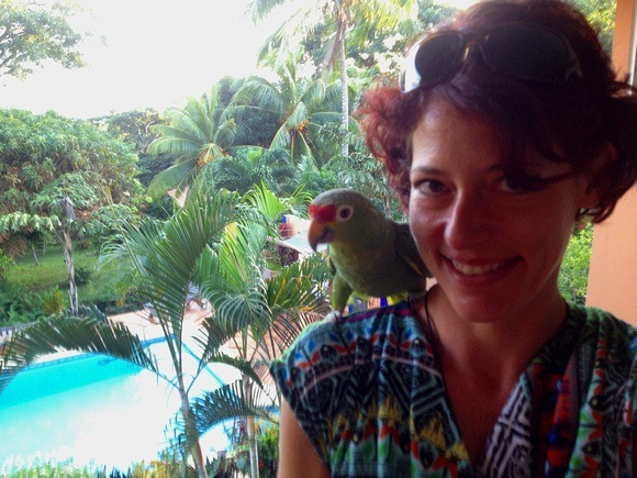 7 Countries and 34,000 Miles: 2014 Travel Summary