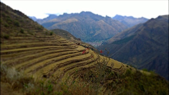 mountainside terraces of Peru