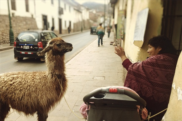 A llama and it's owner: a common sight in Cusco, where I had my purse stolen