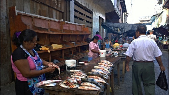 Fish market in Belen