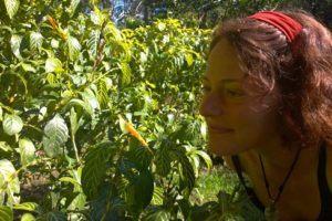 plant dieta in Peru's jungle