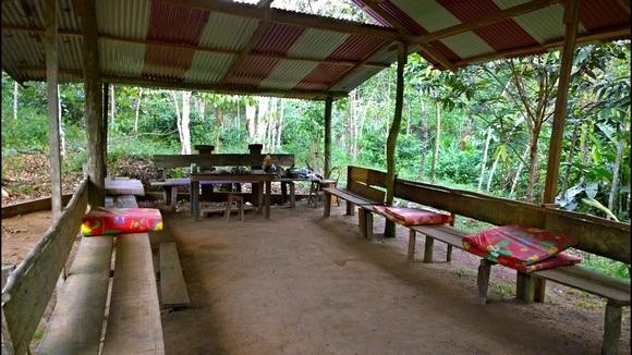 ayahuasca ceremony maloca in the jungle