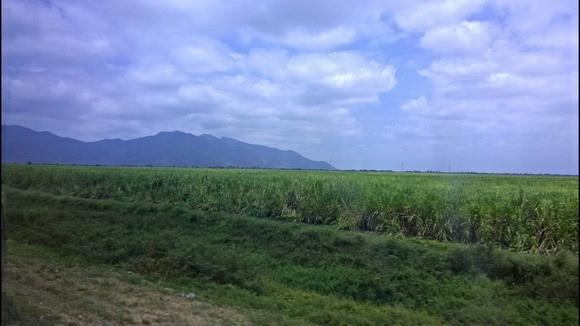 scenery near Guayaquil, Ecuador