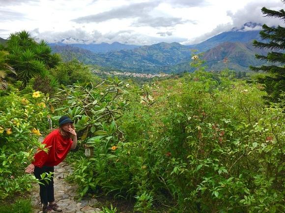 The Andes near Vilcabamba