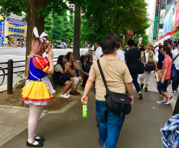 Akihabara maid snow white
