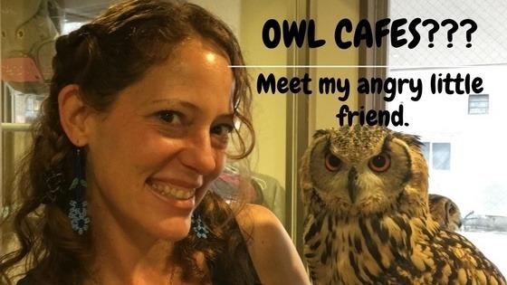 Owl Cafes in Tokyo, Good or Bad? (Vlog Ep. 16)