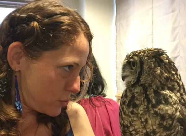 eye to eye with an owl