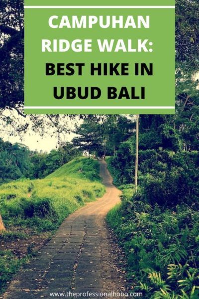 Here's why Campuhan Ridge Walk is the best hike in Ubud Bali, with tips for how to find it and what to see. #Ubud #Bali #Campuhan #Campuhanridgewalk #Balihikes #travelhiking #TheProfessionalHobo