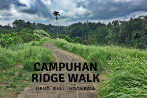 Campuhan Ridge Walk in Ubud Bali