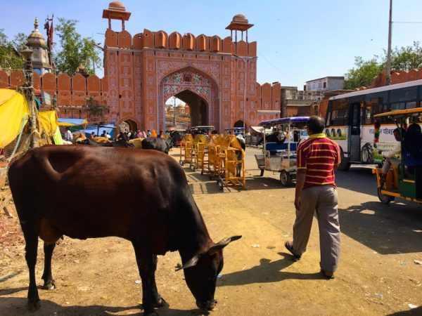 entrance to the Pink City in Jaipur
