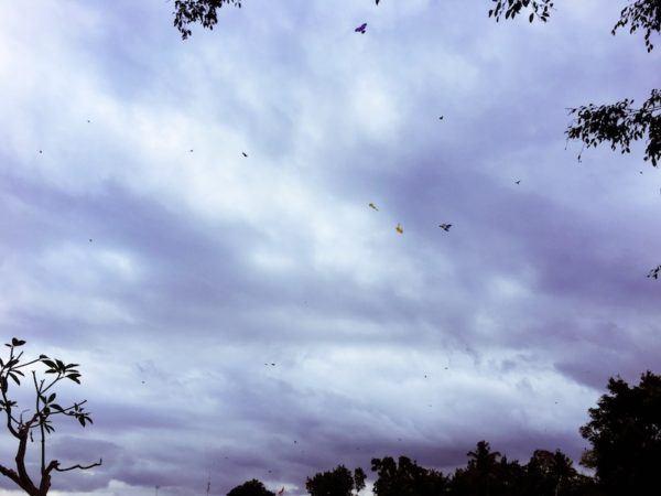 kites in the sky in Bali