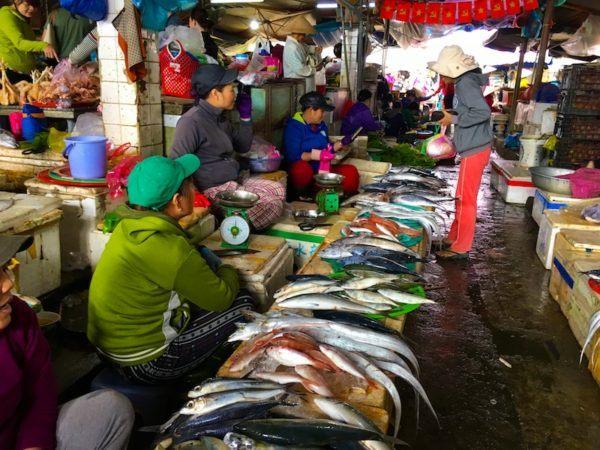 Hoi An market fish for sale