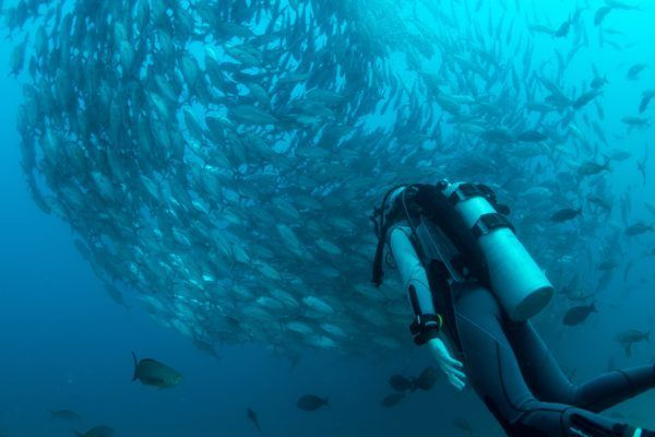 It's important to have travel health insurance if you scuba dive!