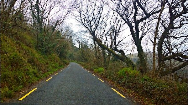 One Lane Road with Mossy Hill and bare trees - learning rules for travel