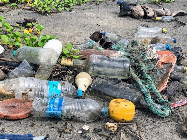 plastic garbage washed up on the beach - all the more reason for a single use plastic ban