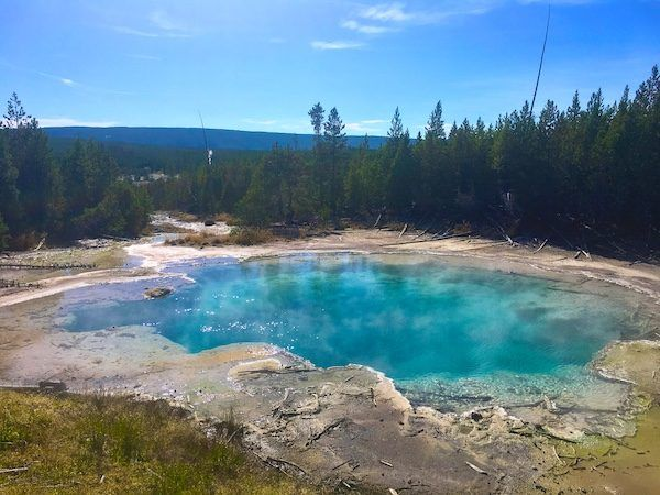 Emerald Spring, at Norris Geyser Basin in Yellowstone