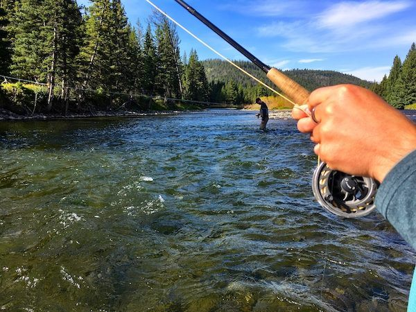Fly Fishing on the Gallatin River Montana