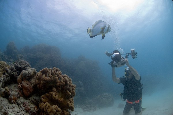Gary Arndt photographing underwater Great Barrier Reef