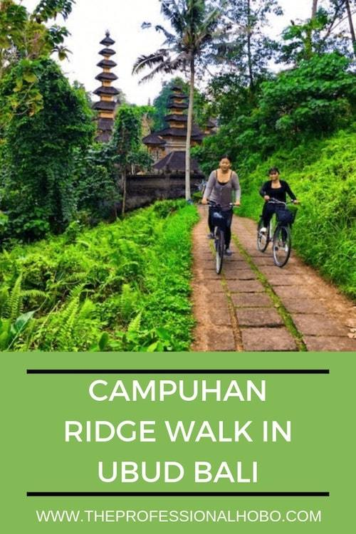 The Campuhan Ridge Walk is a slice of nature, a mere 10 minute walk from the hectic centre of Ubud. See for yourself in this post (with directions) and vid! . #FullTimeTravel #TravelPlanning #TravelTips #TravelWebsites #Ubud #Bali #Indonesia #TravelAsia #CampuhanRidge #RidgeWalkFacts #KarsaCafe #AdventureTravel #TravelHiking #BaliHiking #CampuhanRidgeWalk