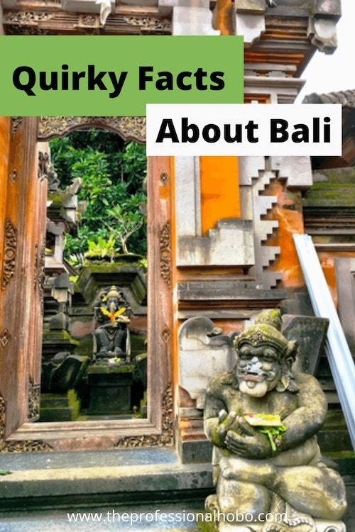 Here are some random facts and observations about Bali that you might not uncover in your research! #Bali #Indonesia #Traveltips #Balitravel #Ubud #TheProfessionalHobo