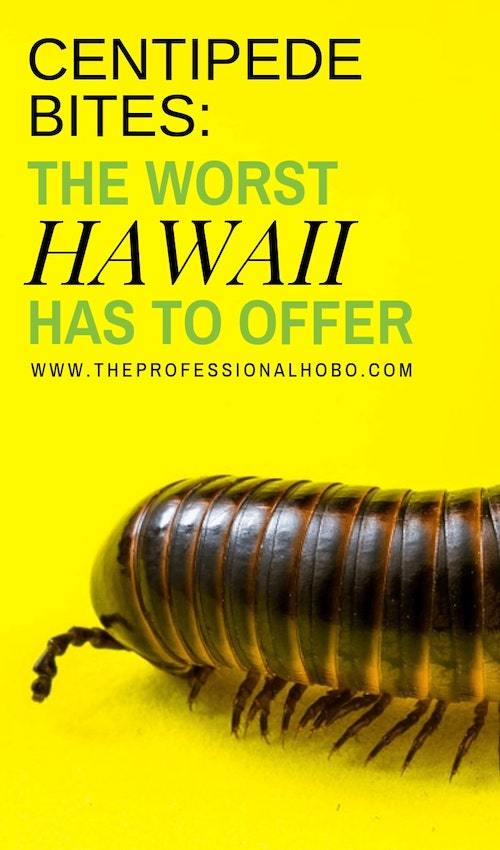 Centipedes: the worst Hawaii has to offer! Here's what it's like to be bitten by one...twice.